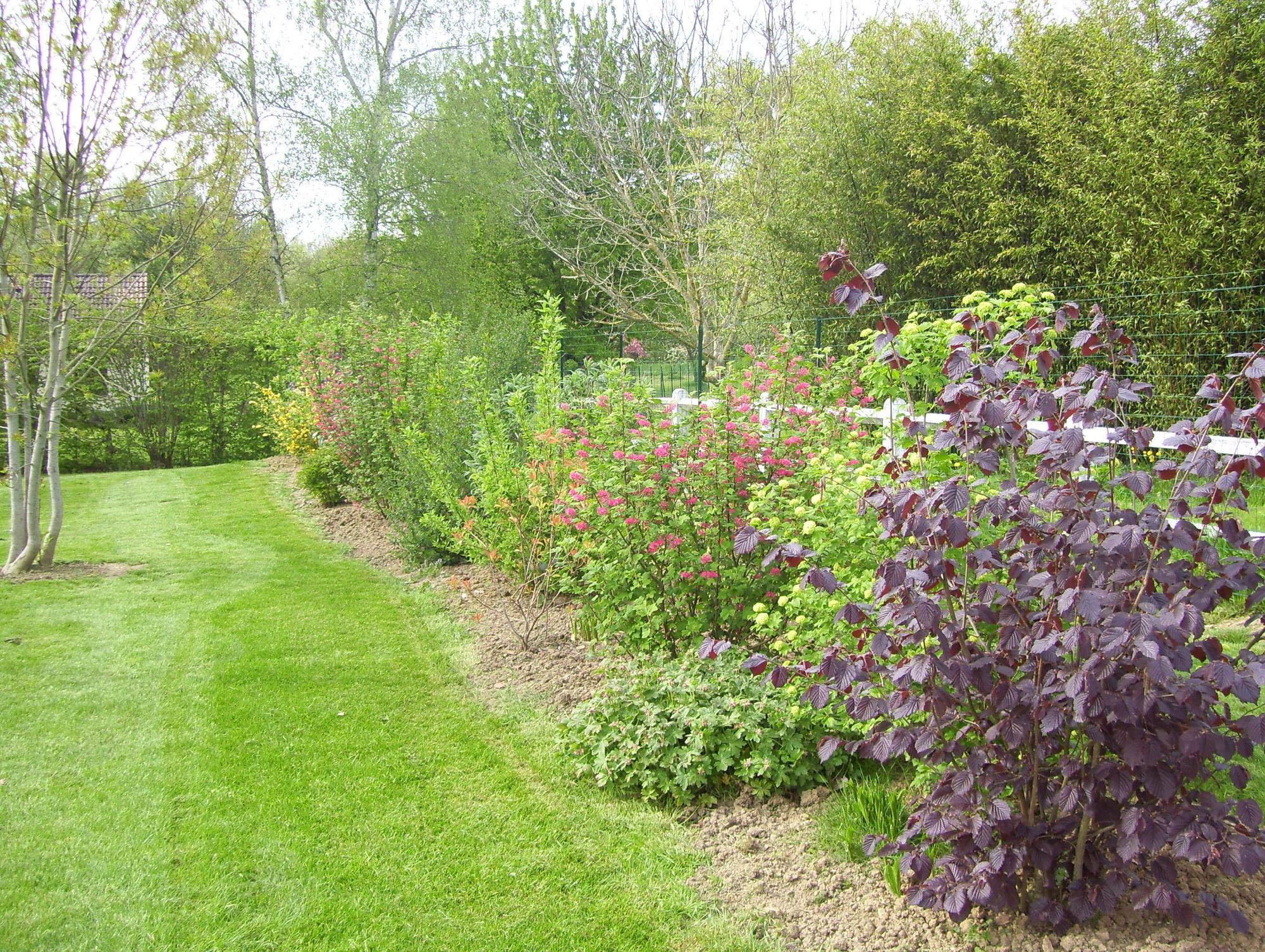 desherbant selectif pelouse trouvez le meilleur prix sur voir avant d 39 acheter. Black Bedroom Furniture Sets. Home Design Ideas