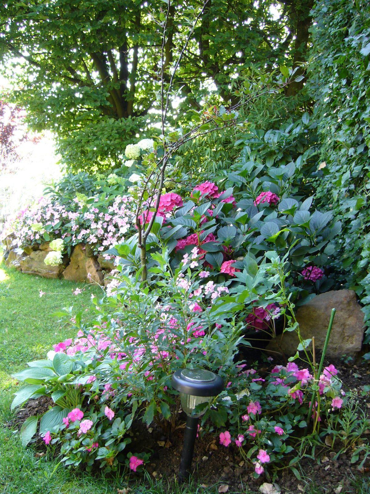 Paysagiste toucy fp paysages lagage am nagement for Entretien jardin 86